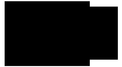 极点艺术管理公司 Logo